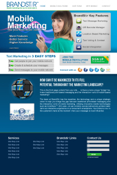 Brandstir Website